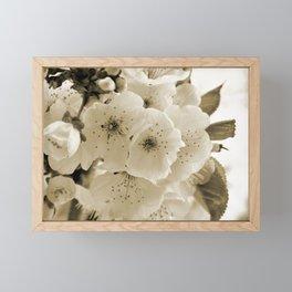 Cherry Blossoms Monochrome Framed Mini Art Print