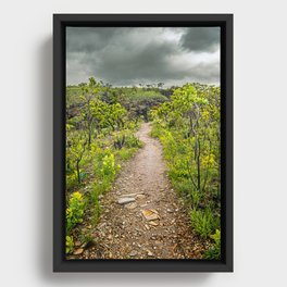 The path of Cerrado. Rocky trail surrounded by the Cerrado vegetation of Brazil on a cloudy day. Framed Canvas