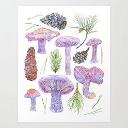 Wild Mushrooms - Wood Blewits and Pine Art Print