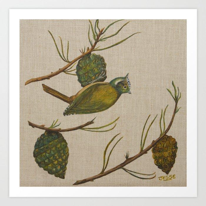 Cone Bird Art Print