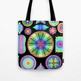 Ernst Hackel Diatomea Diatoms Tote Bag