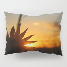 Solar Leak Pillow Sham