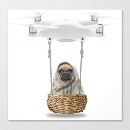 Pug Dog in a Drone Canvas Print