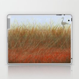 Autumn Marsh Laptop & iPad Skin