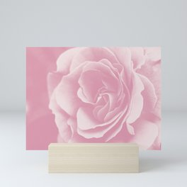 Light Pink Rose #2 #floral #art #society6 Mini Art Print