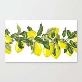 Citrus OrangeTree Branches with Flowers and Fruits Canvas Print