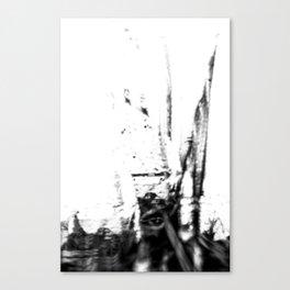 The Unseen Eye Canvas Print