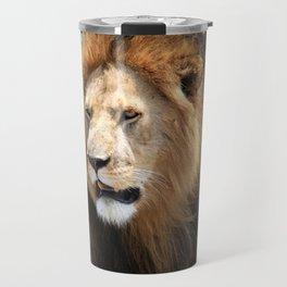 African Male Lion Travel Mug