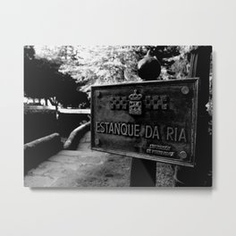 Estanque Gallego Metal Print