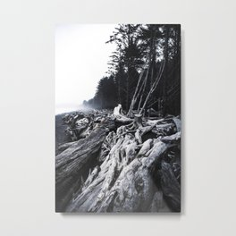 Washington Coast Metal Print