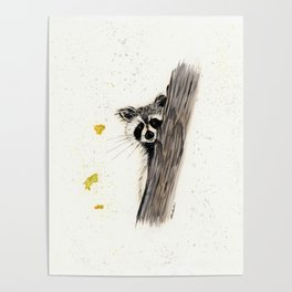 Rocky Raccoon - animal watercolor painting Poster
