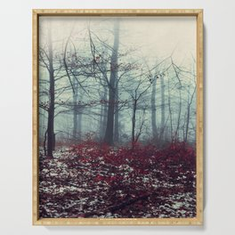 Crimson Floor -  snow patches on wet fall foliage Serving Tray