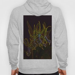 Star Orchids Hoody