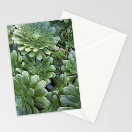 Succulents in Green Stationery Cards