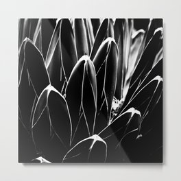 Abstract Nature Metal Print