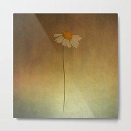 Stil flowering Metal Print