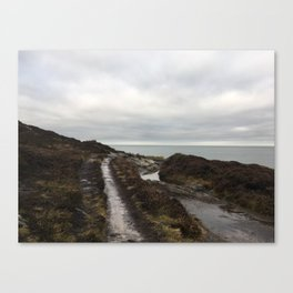 Anglesey - The beaten track Canvas Print