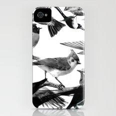 A Volery of Birds iPhone (4, 4s) Slim Case