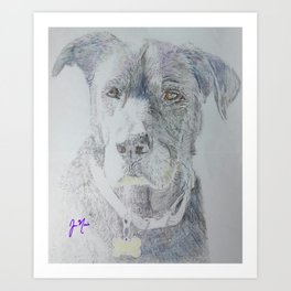 Roman the Dog Art Print