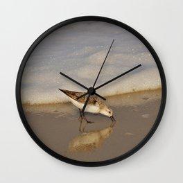 Beach Bird Wall Clock