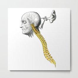 spinal column Metal Print