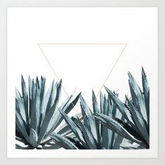Agave Triangle Art Print