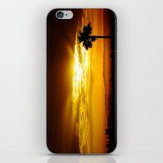 Echo Park Series #4 iPhone & iPod Skin