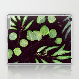 Eucalyptus Leaves Laptop & iPad Skin