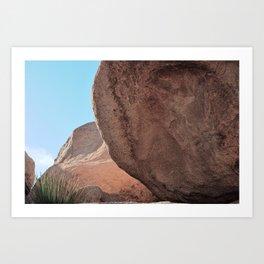 Joshua Tree - Sublime Art Print