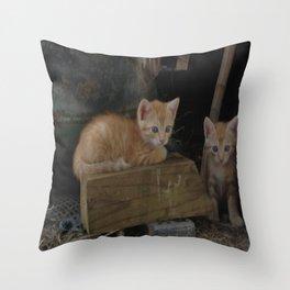 More Kitty Kats!!! Throw Pillow