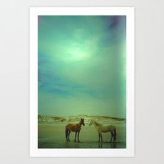 Wild Horses of Cumberland Island Art Print