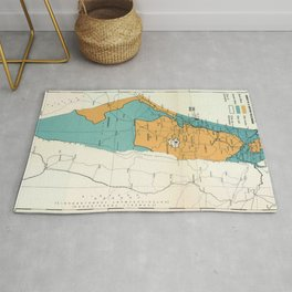 Map of Palestine Plan of Partition with Economic Union Rug