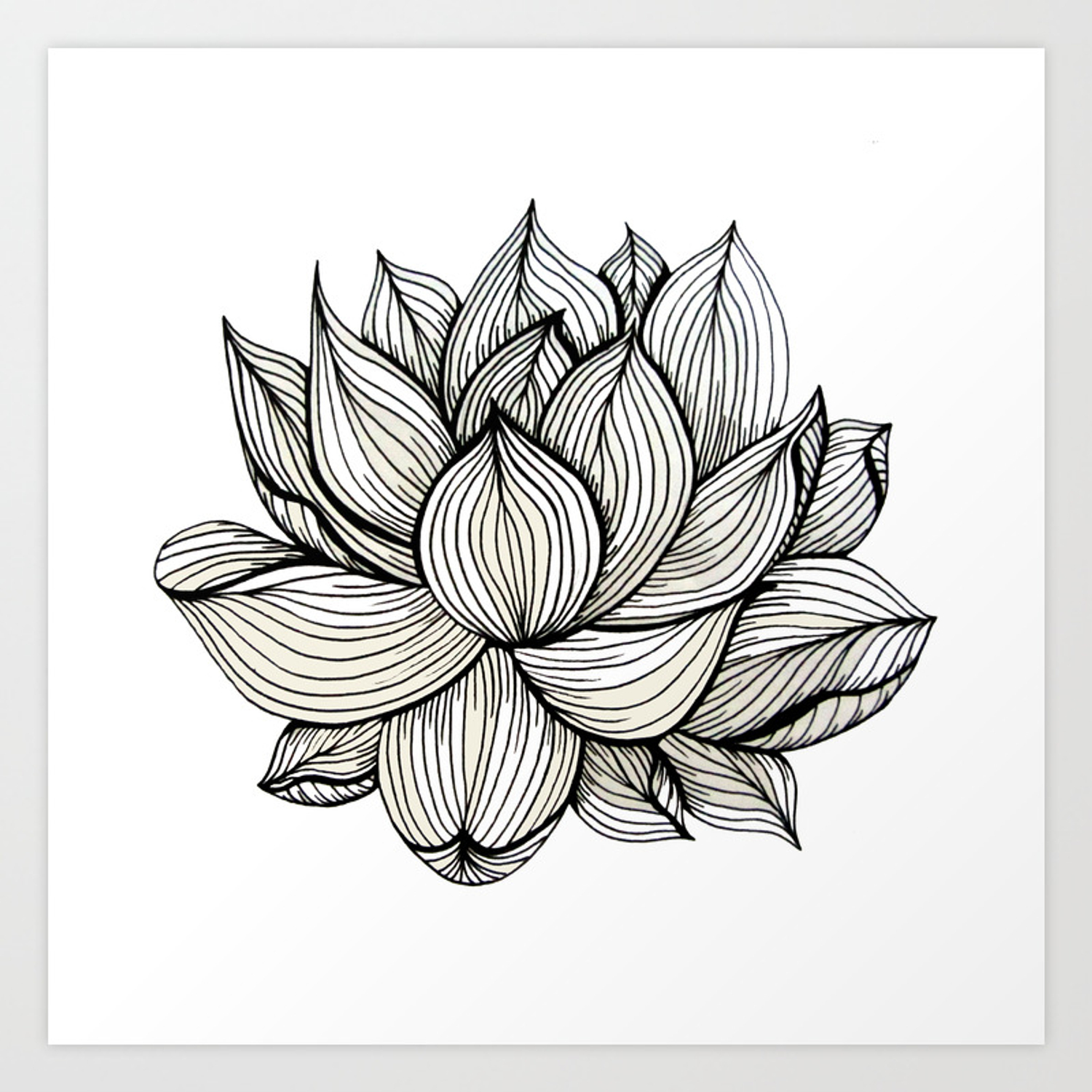 Lotus Flower Black And White Nature Organic Design Drawing Abstract Unique Lines Pattern Art Print