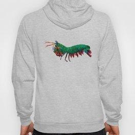 Geometric Abstract Peacock Mantis Shrimp  Hoody