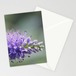 Unremembered acts of kindness... Stationery Cards