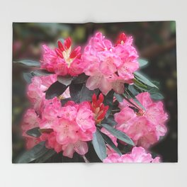 Dreamy Pink Rhododendrons Throw Blanket