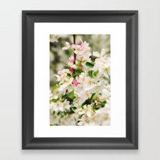 Signs of Spring Framed Art Print