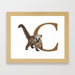 C for Coati Framed Art Print