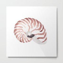 Nautilus Sea Shell Metal Print