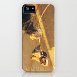 Cute Yorkshire lovers iPhone Case