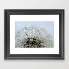 Dandelion droplets Framed Art Print