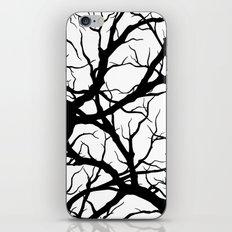 Black n White branche iPhone & iPod Skin