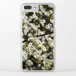Early Spring White Blossoms Clear iPhone Case