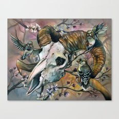 Aries and the Finches Reborn Canvas Print