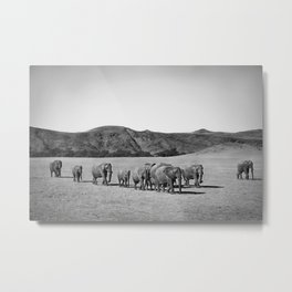 Desert Elephants Metal Print