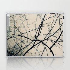 Beneath Bare Branches Laptop & iPad Skin
