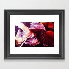 金鱼一 Framed Art Print
