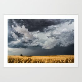 Cotton Candy - Storm Clouds Over Wheat Field in Kansas Art Print