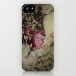 December Rose iPhone Case