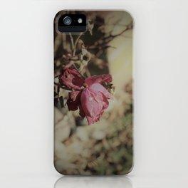 December Rose iPhone Case